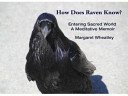 How Does the Raven Know