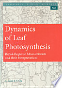 Dynamics of Leaf Photosynthesis