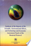 Synthesis of the Reports of the Scientific, Environmental Effects, and Technology and Economic Assessment Panels of the Montreal Protocol