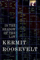 Pdf In the Shadow of the Law