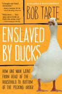 Pdf Enslaved by Ducks