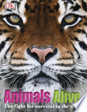Animals Alive