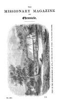 Strona 517
