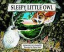 Sleepy Little Owl Book PDF