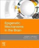 Epigenetic Mechanisms in the Brain