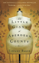 The Little Giant of Aberdeen County Pdf/ePub eBook