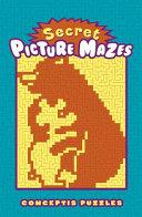 Secret Picture Mazes Book