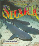 Pdf The Life Cycle of a Shark