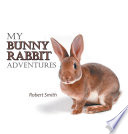 My Bunny Rabbit Adventures
