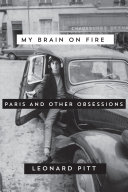 My Brain on Fire ebook