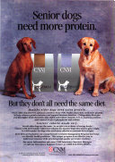 Veterinary Medicine Book PDF