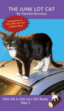 The Junk Lot Cat