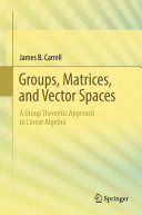Groups  Matrices  and Vector Spaces