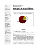 Telecom Mergers & Acquisitions Monthly Newsletter November 2009