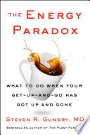The Energy Paradox Book