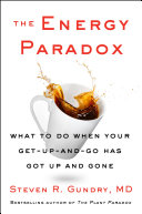 The Energy Paradox Pdf