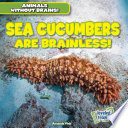 Sea Cucumbers Are Brainless