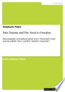 Pain  Trauma and The Need to Visualize Book