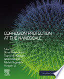 Corrosion Protection at the Nanoscale