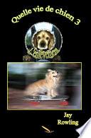 Quelle vie de chien 3 L'enlèvement