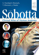 Sobotta Clinical Atlas Of Human Anatomy One Volume English Book PDF