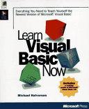 Learn Visual Basic Now