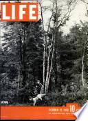 29 окт 1945