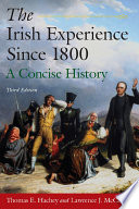 The Irish Experience Since 1800  A Concise History