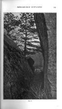 Сторінка 345