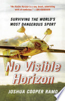 No Visible Horizon