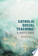 Catholic Social Teaching Book