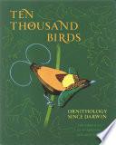Ten Thousand Birds