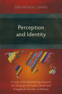 Perception and Identity ebook