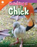 Hatching a Chick Pdf/ePub eBook