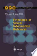 Principles of Visual Information Retrieval