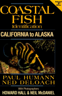 Coastal Fish Identification