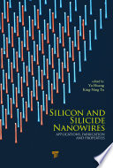 Silicon and Silicide Nanowires