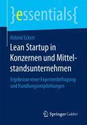Lean Startup in Konzernen und Mittelstandsunternehmen