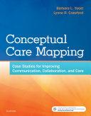 Conceptual Care Mapping   E Book