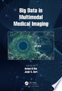 Big Data in Multimodal Medical Imaging