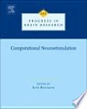 Computational Neurostimulation Book
