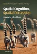 Spatial Cognition, Spatial Perception