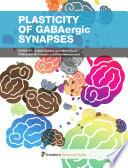Plasticity of GABAergic Synapses Book