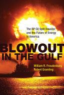 Pdf Blowout in the Gulf