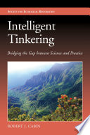 Intelligent Tinkering  : Bridging the Gap between Science and Practice
