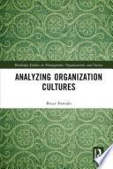 Analyzing Organization Cultures