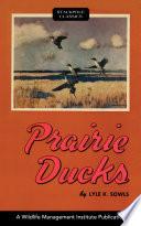 Prairie Ducks