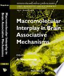 Macromolecular Interplay In Brain Associative Mechanisms