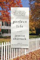 Perfect Life: A Novel Pdf/ePub eBook