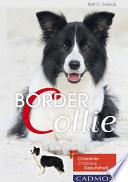 Border Collie  : Charakter, Erziehung, Gesundheit.